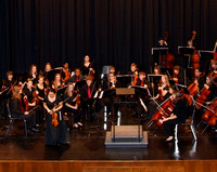 Orchestra 2011-2012